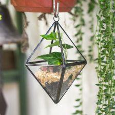 Aliexpress Nowoczesne Geometryczne Szklane Terrarium Wiszące Sadzarka Ogród Sadzarka Puli Dla Kwiatów Soczyste Roślin Bonsai Doniczka Powietrza Dekora