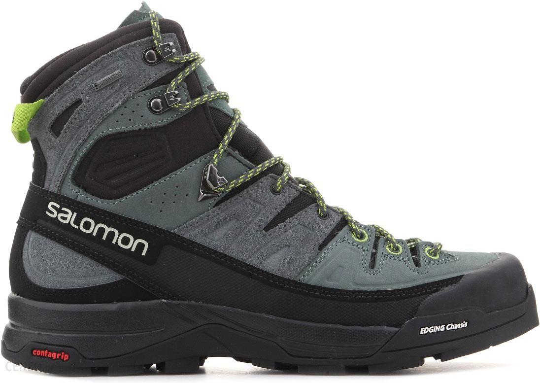 Buty trekkingowe Salomon X Alp High Ltr Gtx 401649 Ceny i opinie Ceneo.pl