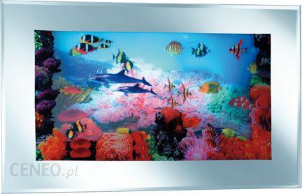 Reality Akwarium Obraz Podswietlany R2562 00 Opinie I Atrakcyjne Ceny Na Ceneo Pl