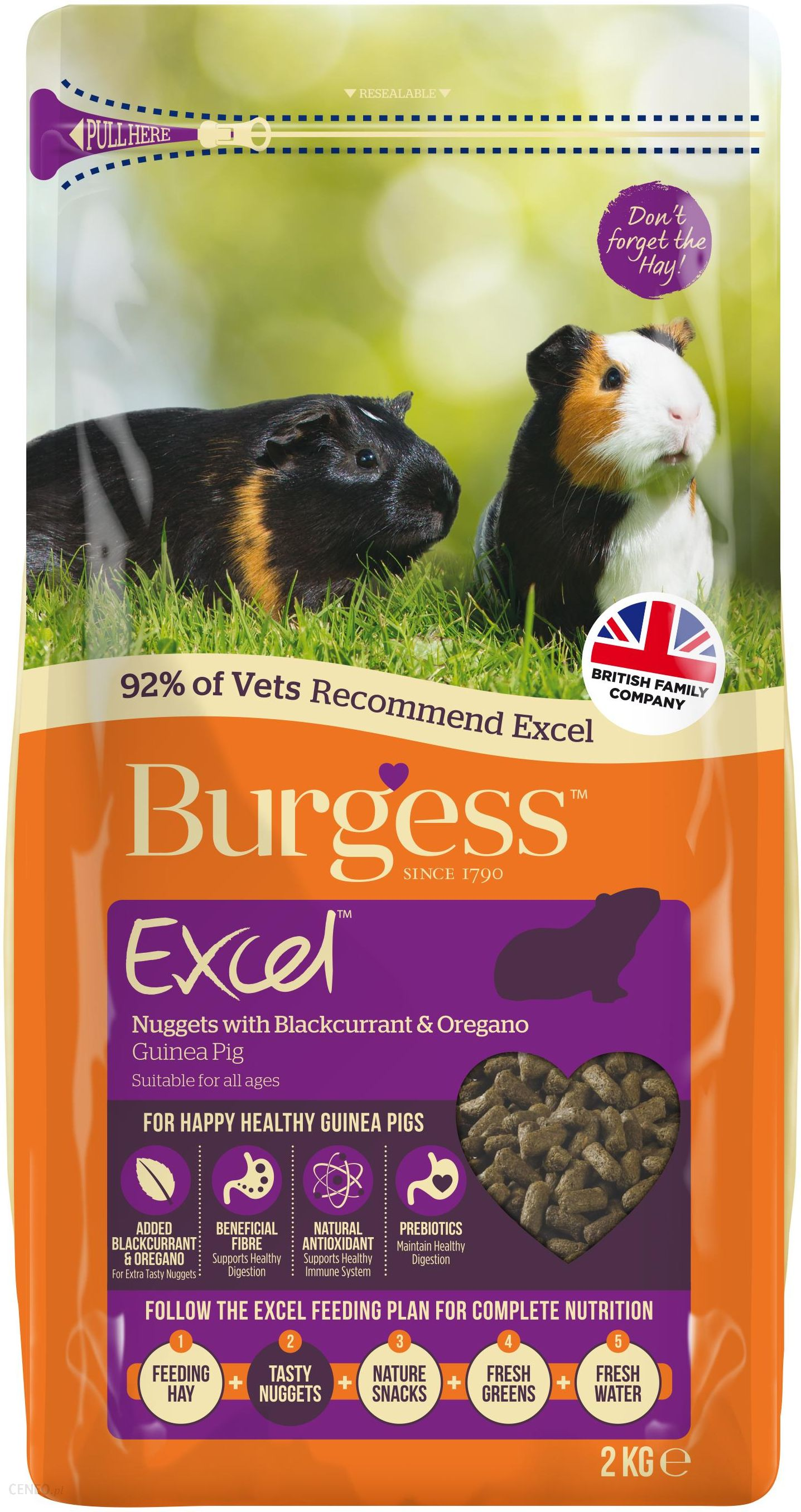 Burgess Karma Brytyjska Dla Świnki Morskiej Z Porzeczką I Oregano 2kg