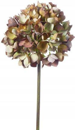 ed92e2863205f8 Hortensje 52cm brąz sztuczne kwiaty Allegro