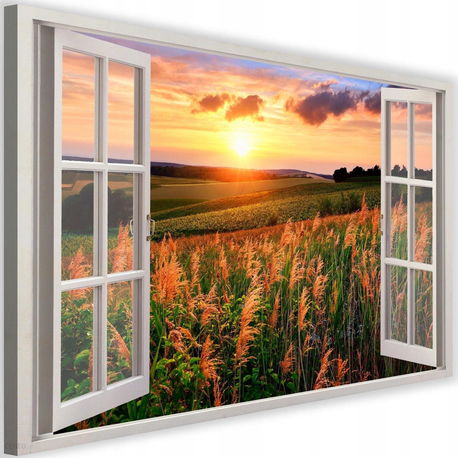 Картинка окно в поле