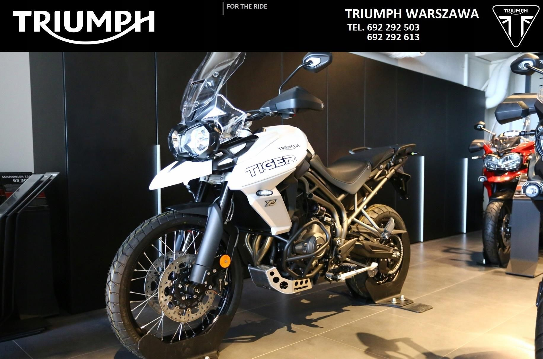 Triumph Tiger 800 Xcx 2018 Promocja Opinie I Ceny Na Ceneo Pl