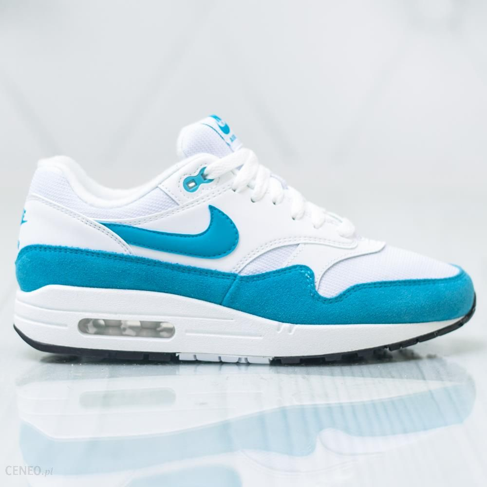 Nike Wmns Air Max 1 319986 117