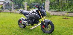 Honda Grom Msx125 Kat B Tuning Super Stan Opinie I Ceny Na Ceneo Pl