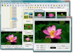 FastStone Software FastStone Image Viewer