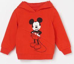 258f31d15fa012 Bluzy i swetry dla dzieci Bluzy z kapturem, Czerwone - Ceneo.pl