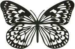 Motyle Na ścianę Znaleziono Na Ceneopl