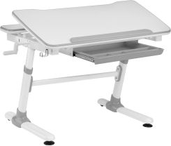 Ergodesk Regulowane Smart Optima