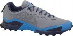 Reebok All Terrain Craze DV9368 Męskie Do Biegania