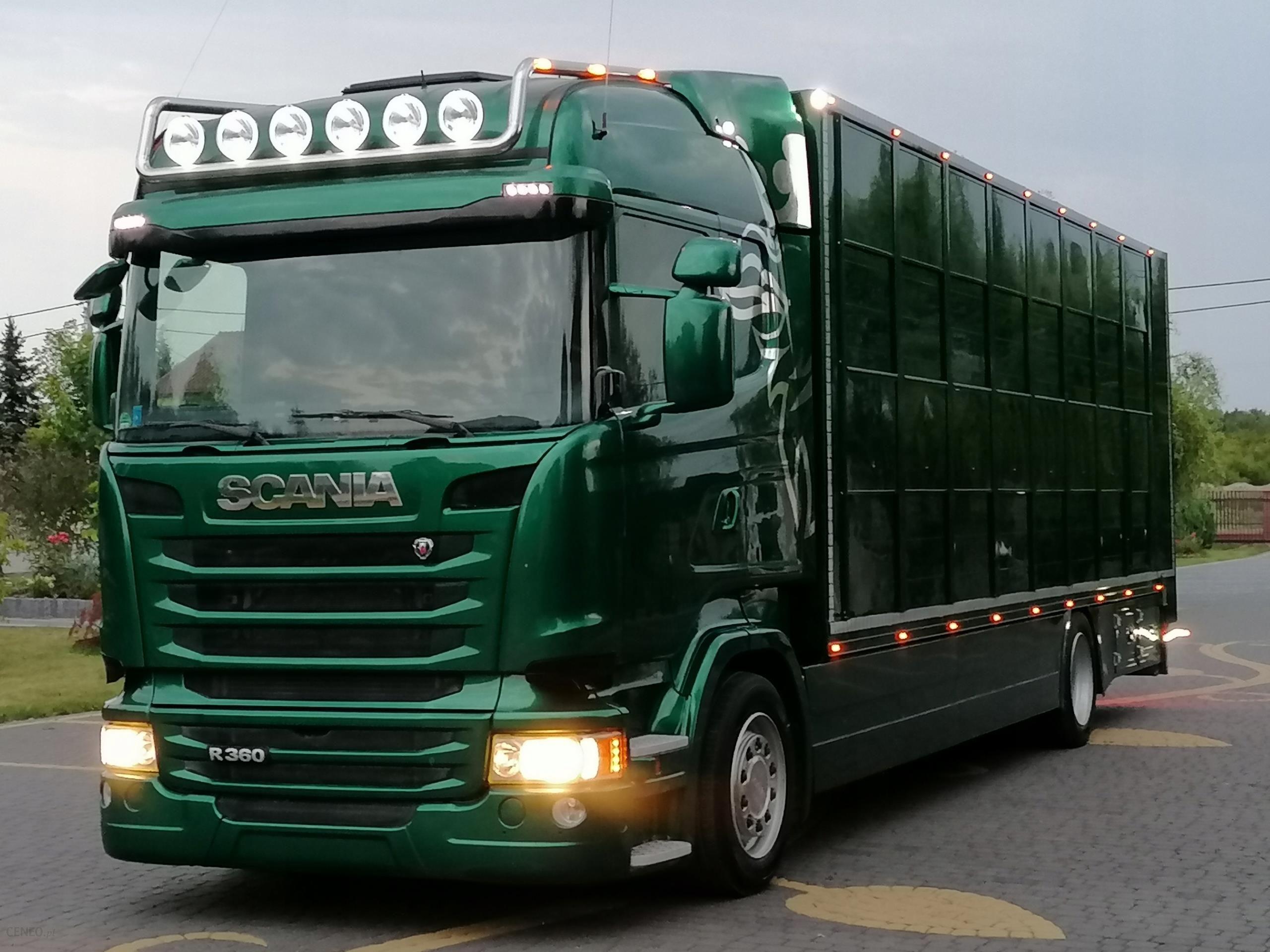 Scania R360 Do Zywca Zwierzat Bydla Opinie I Ceny Na Ceneo Pl
