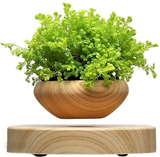 Hurtownia Roślin Sztucznych Lewitująca Doniczka Air Bonsai