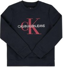 bluza calvin klein dla chłopca oryginalne