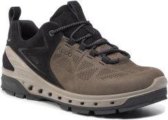Ecco Men Biom Venture TR Trekking & Wander buty, kolor