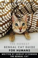 The Honest Bengal Cat Guide for Humans: Bengal Cat and Kitten Care