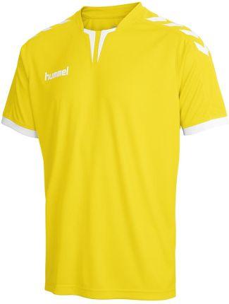 Koszulka adidas Tabela 18 Jersey JR biała CE1717 Ceny i