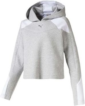 Puma Bluza Evo Fz Hoody W Light Gray Heather Xs