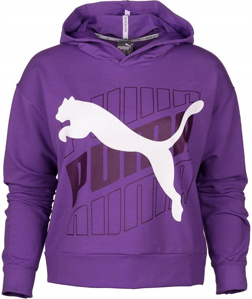 Bluzka sportowa 'ELEVATED ESS' Puma Swetry damskie fioletowe w About You