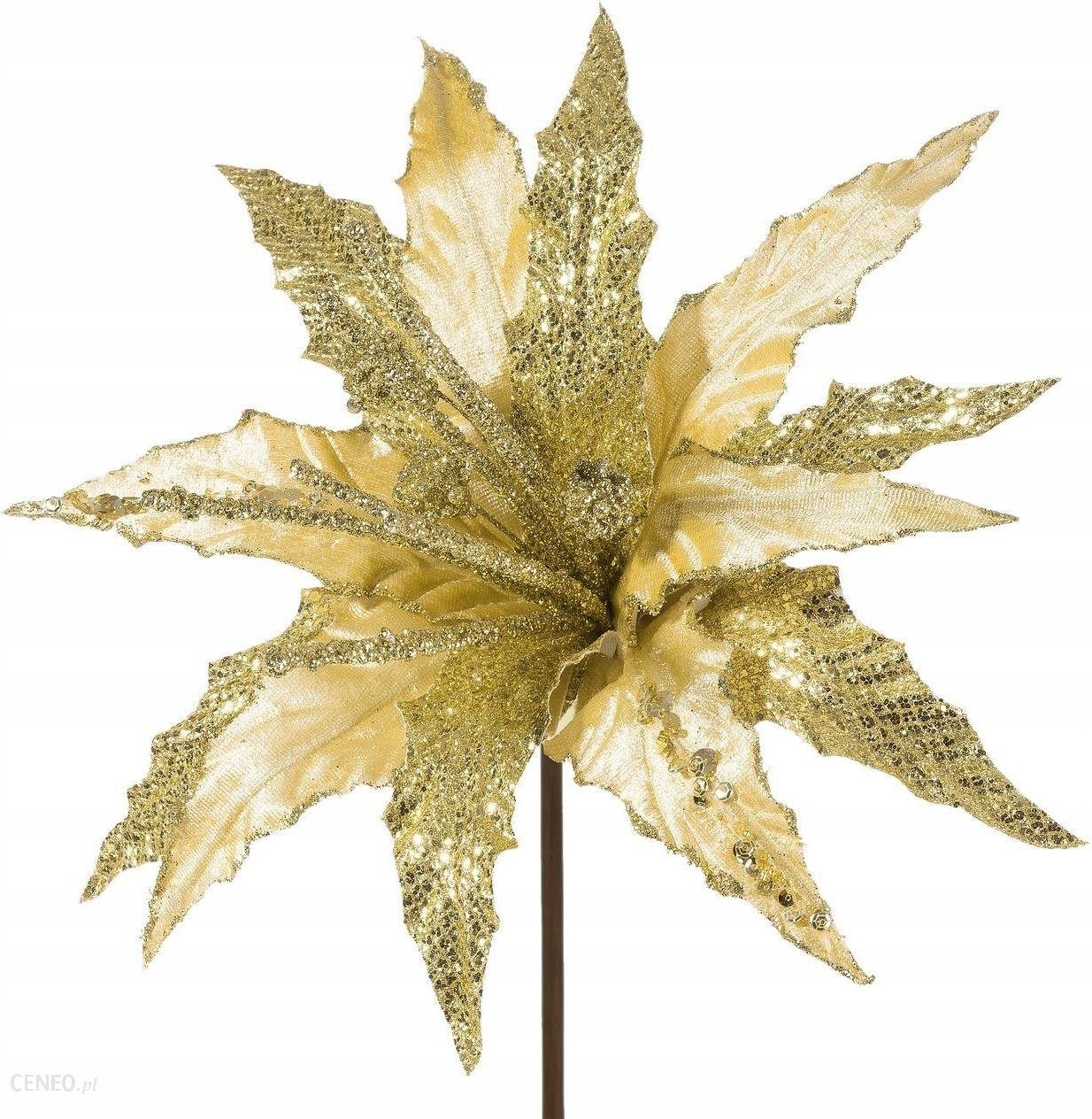 Zlote Poinsecje Kwiaty Na Choinke Zestaw 3szt Opinie I Atrakcyjne Ceny Na Ceneo Pl