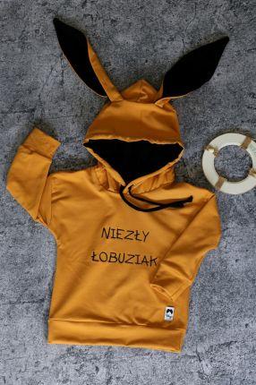 170 Bluza Adidas Młodzieżowa Z Kapturem EJ5595 Ceny i