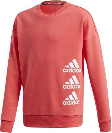 Bluza adidas Trefoil CD6504 146 fusco2sport Ceny i opinie