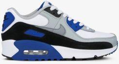 Nike Air Max 90 Ltr (Gs) CD6864 103