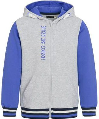 bluza adidas biało szaro niebieska z kapturem lata 90