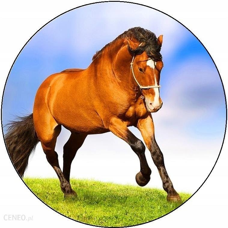 Opłatek Na Tort Zwierzęta Konie Okrągły Gruby 20cm 7827330925 Ceny I Opinie Ceneo Pl