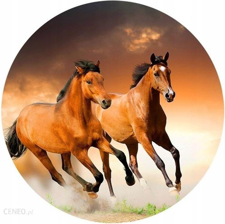 Opłatek Na Tort Zwierzęta Konie Okrągły Gruby 20cm 7827331445 Ceny I Opinie Ceneo Pl