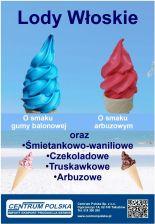 Lody Wloskie Soft Mieszanka Do Lodow 1 Kg Promocja Ceny I Opinie Ceneo Pl