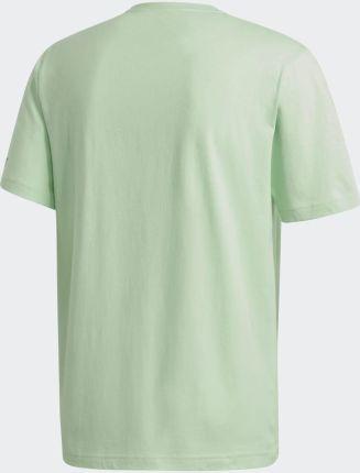 Adidas Terrex Graphic Logo Tee GK7255 - Ceny i opinie T-shirty i koszulki męskie TWUM