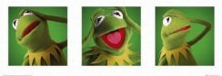 The Muppets Kermit - reprodukcja