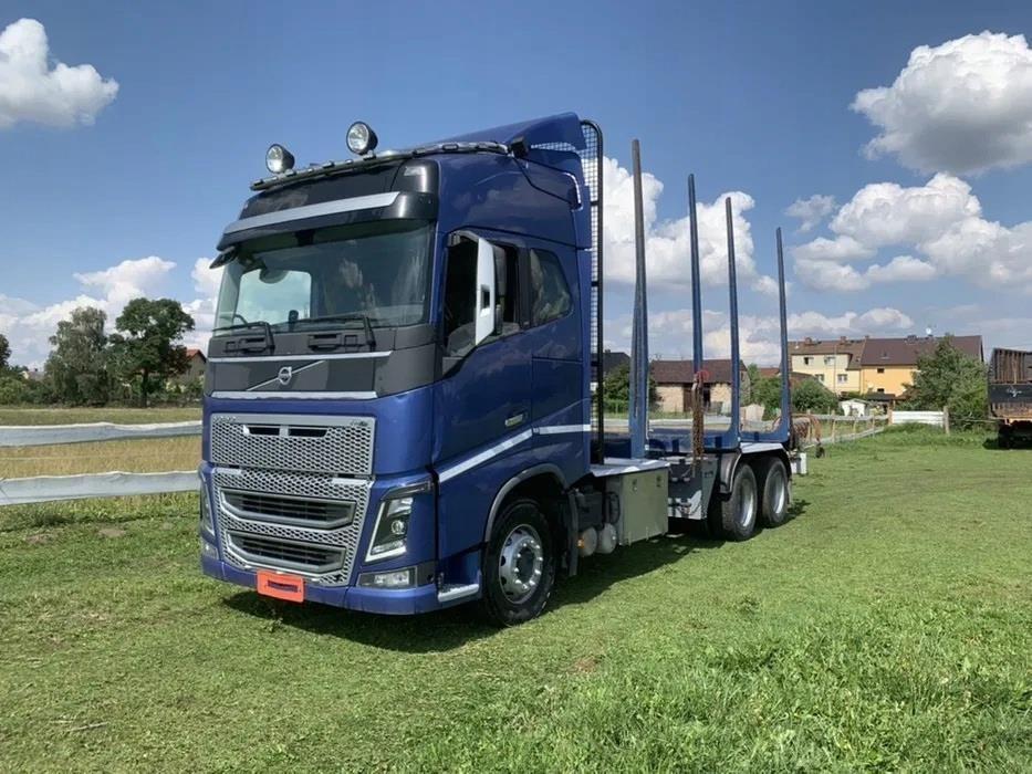 Volvo Fh16 Ciezarowka Do Drewna Lasu Opinie I Ceny Na Ceneo Pl
