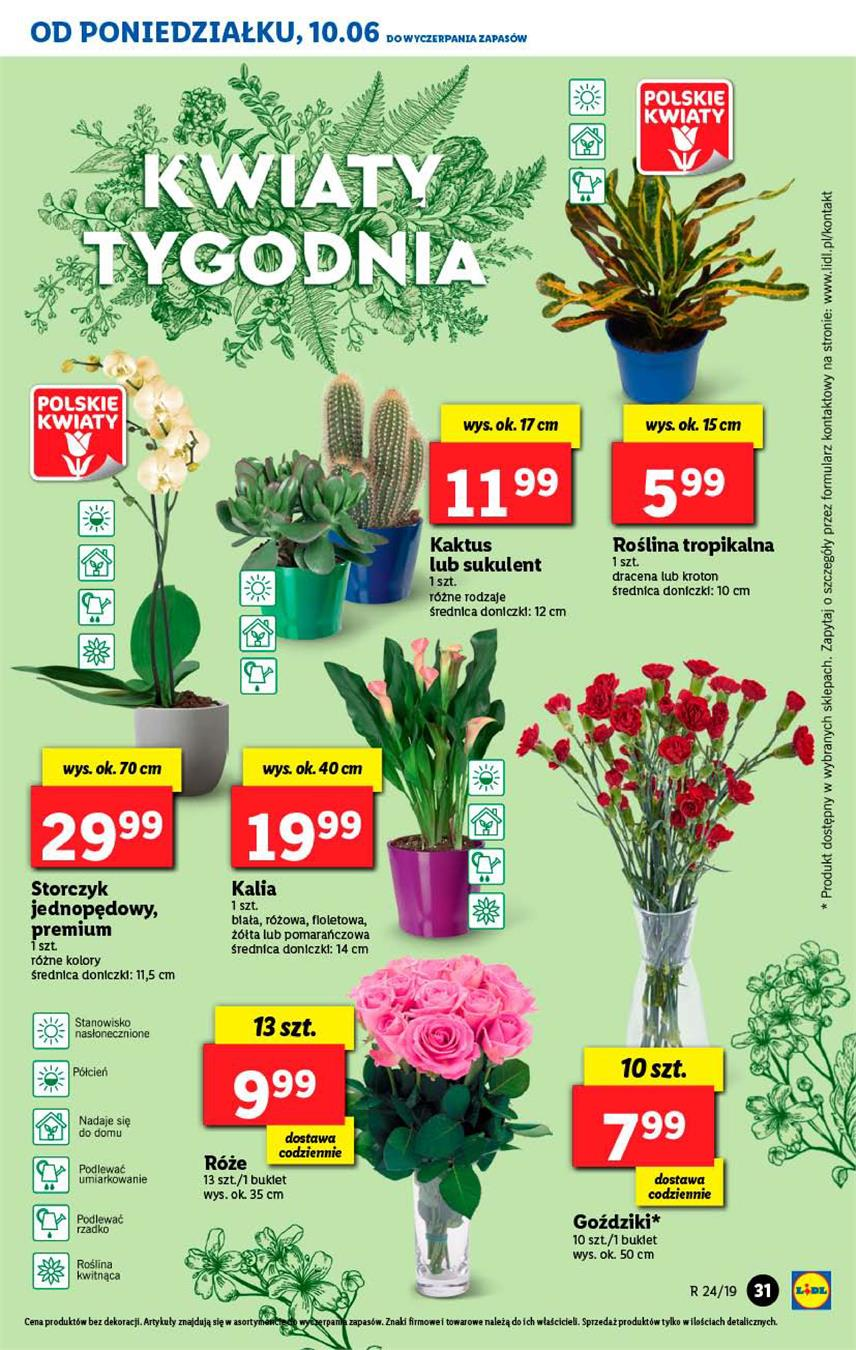 Gazetka Lidl Polska Sp. z o.o. nr 31 od 2019-06-10 do 2019-06-12