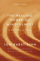 Healing Power of Mindfulness (Kabat-Zinn Jon)