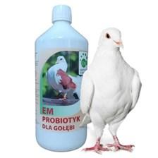 Probiotyk Dla Golebi 1l Greenland Greenland Ceny I Opinie Ceneo Pl