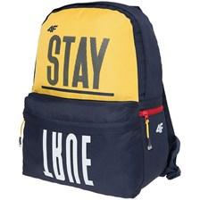 6816fcd9bb976 4f Plecak Miejski Dla Chłopców L18 JPCM200 15L